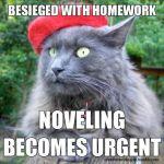 writing cat